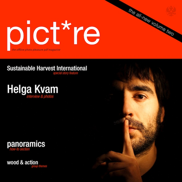 pictre magazine - vol 2 - single