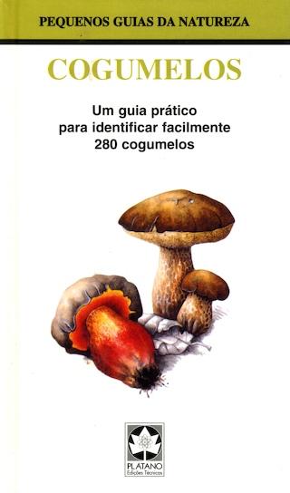 DigWater051